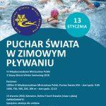 3_stawy_zimowe_plywanie_plakat_A1